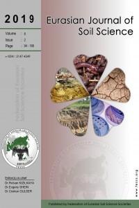 Eurasian Journal of Soil Science